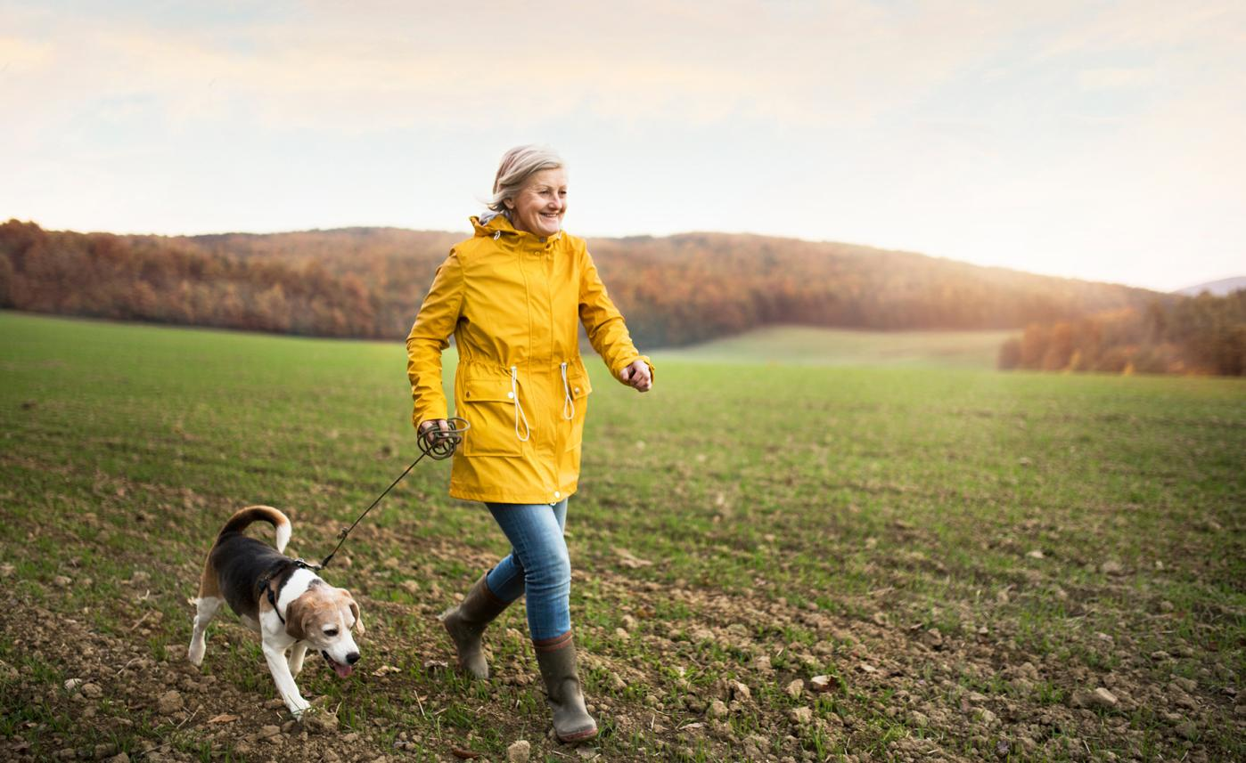 A retirement-aged woman walks her dog in a field on a sunny afternoon.